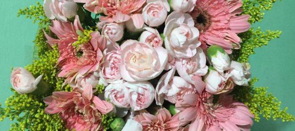 Bunga Cantik Simple Untuk Sahabat  a4401853ef